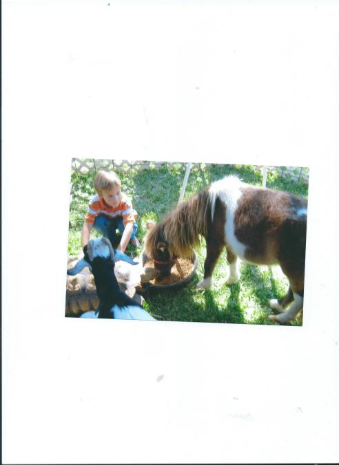 JULIAN AND MOMMY AT PETTING ZOO WITH BEAUTIFUL SHETLAND PONY.FALL 2011
