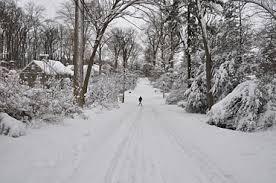 bryn mawr college.snowy walk